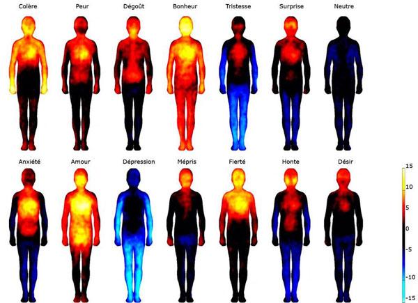 Impacts des émotions dans le corps